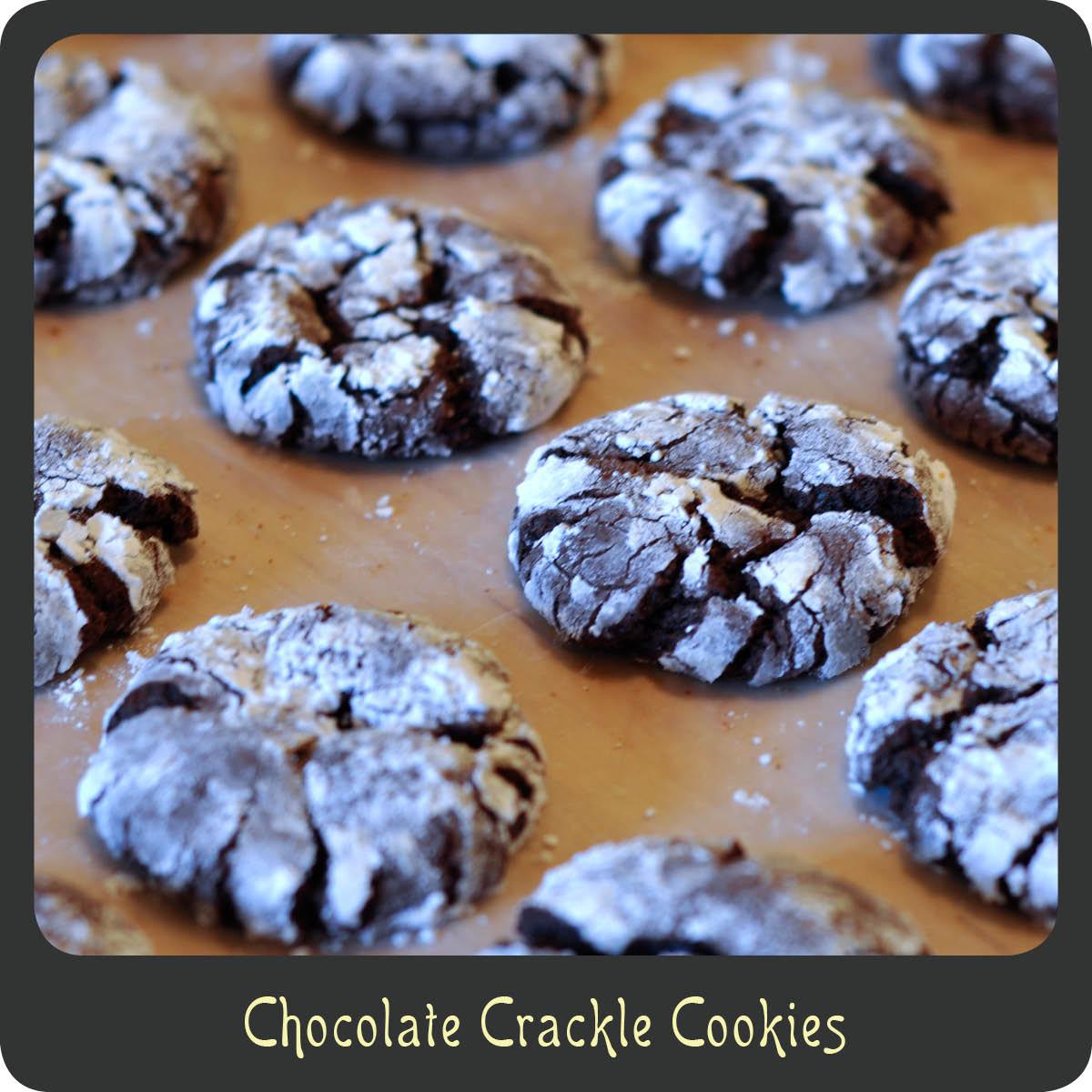 Recipe—Chocolate Crackle Cookies | Diva di Cucina