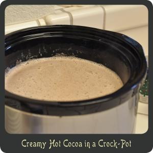 Homemade Hot Cocoa in a Crock-Pot